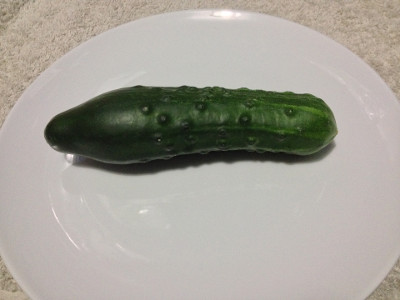 My first homegrown cucumber (Wautoma cultivar).