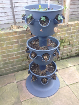 3-tier planter in winter.